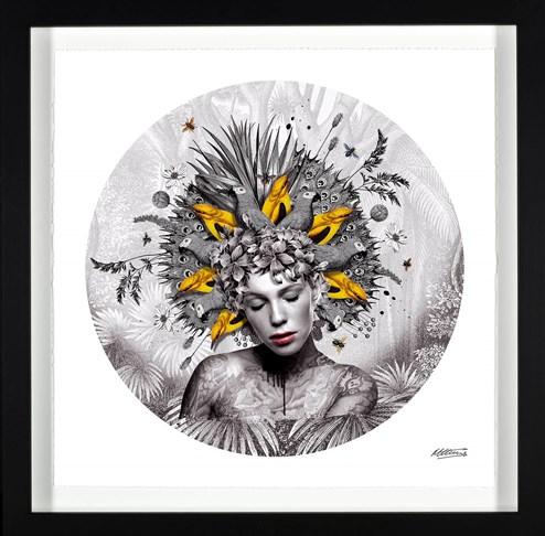 Awakening by Matt Herring - Framed Limited Edition on Paper